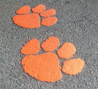Cleamson Paws Thermoplastic Logo