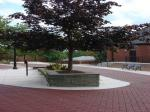 Stamped Asphalt Mansfield University 8