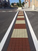 Imprinted Asphalt School Yard - Fishscale and Custom Patterns 3